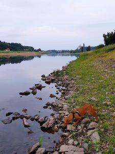 Minicamper Tour nach Meissen an die Elbe by Birgit Strauch
