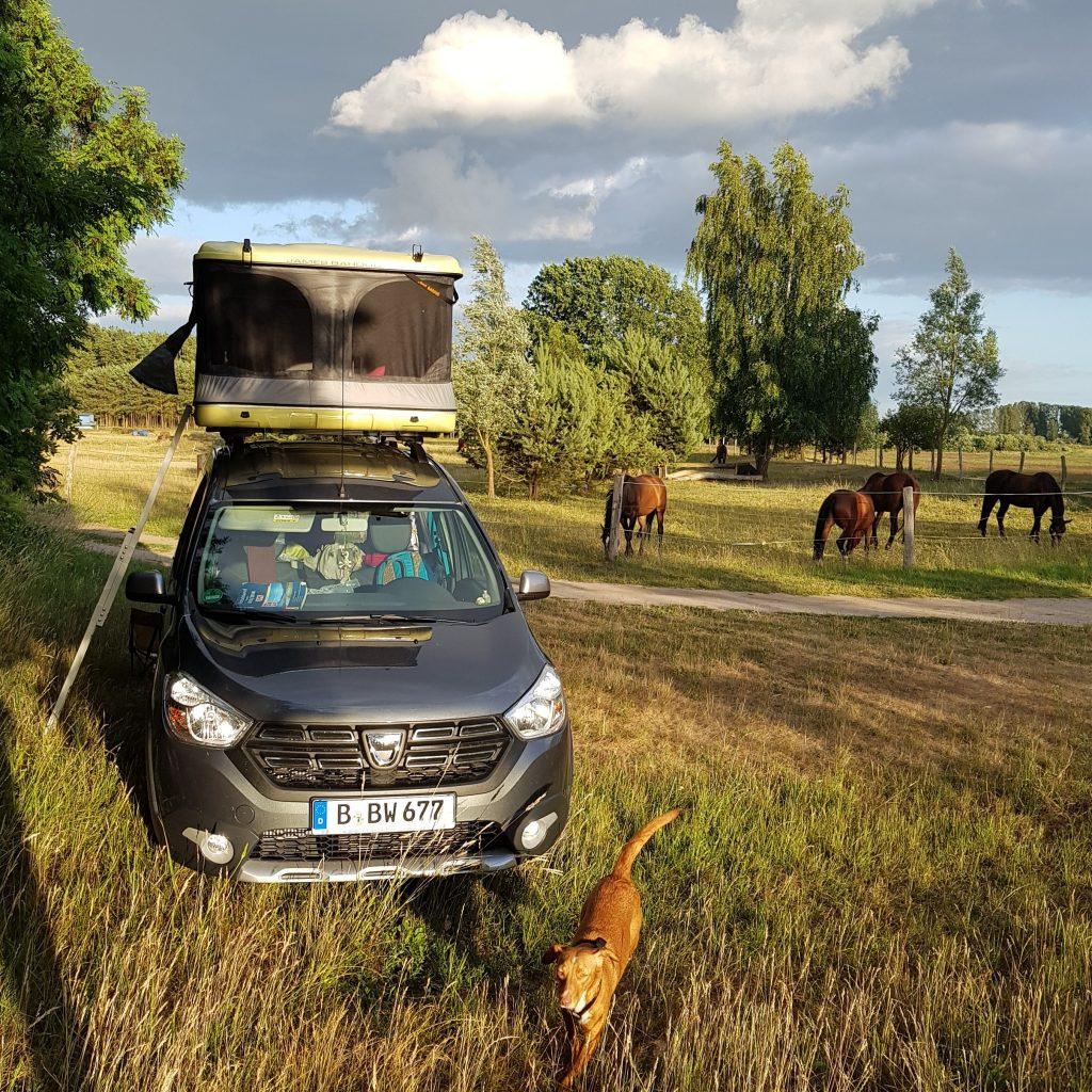 Minicamper Stellplatz Wildcamping Usedom by Birgit Strauch