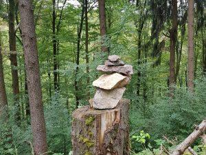 Minicamper Tour zum Herz-Nerven-Weg in Frauenwald by Birgit Strauch