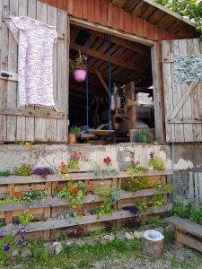 Mit dem Minicamper nach Rouge in Estland by Birgit Strauch