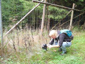 Wanderung von Neuhausen nach Seiffen by Birgit Strauch