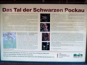 Tal der schwarzen Pockau Erzgebirge by Birgit Strauch