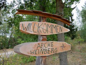 Arche Weinberg Bestensee by Birgit Strauch