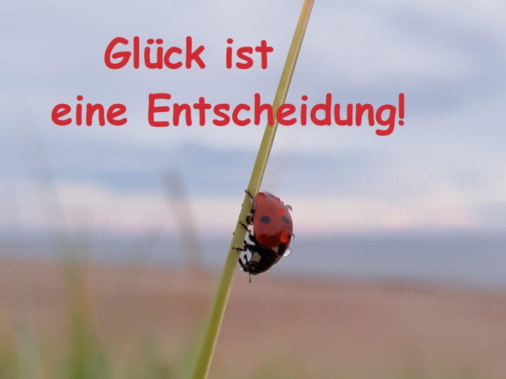 Glück ist eine Entscheidung by Birgit Strauch