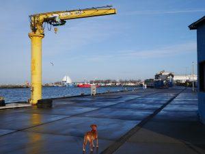 Hafen von Hel in Polen by Birgit Strauch