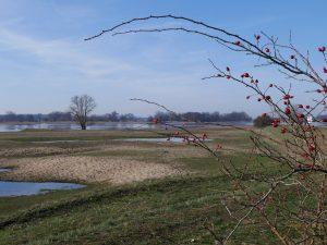 Havel / Elbe bei Gnevsdorf by Birgit Strauch