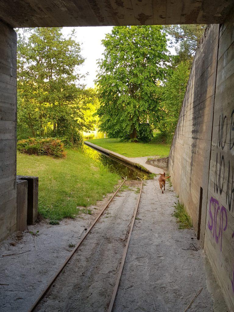 Freistehen in Brandenburg in Märkisch Buchholz by Birgit Strauch