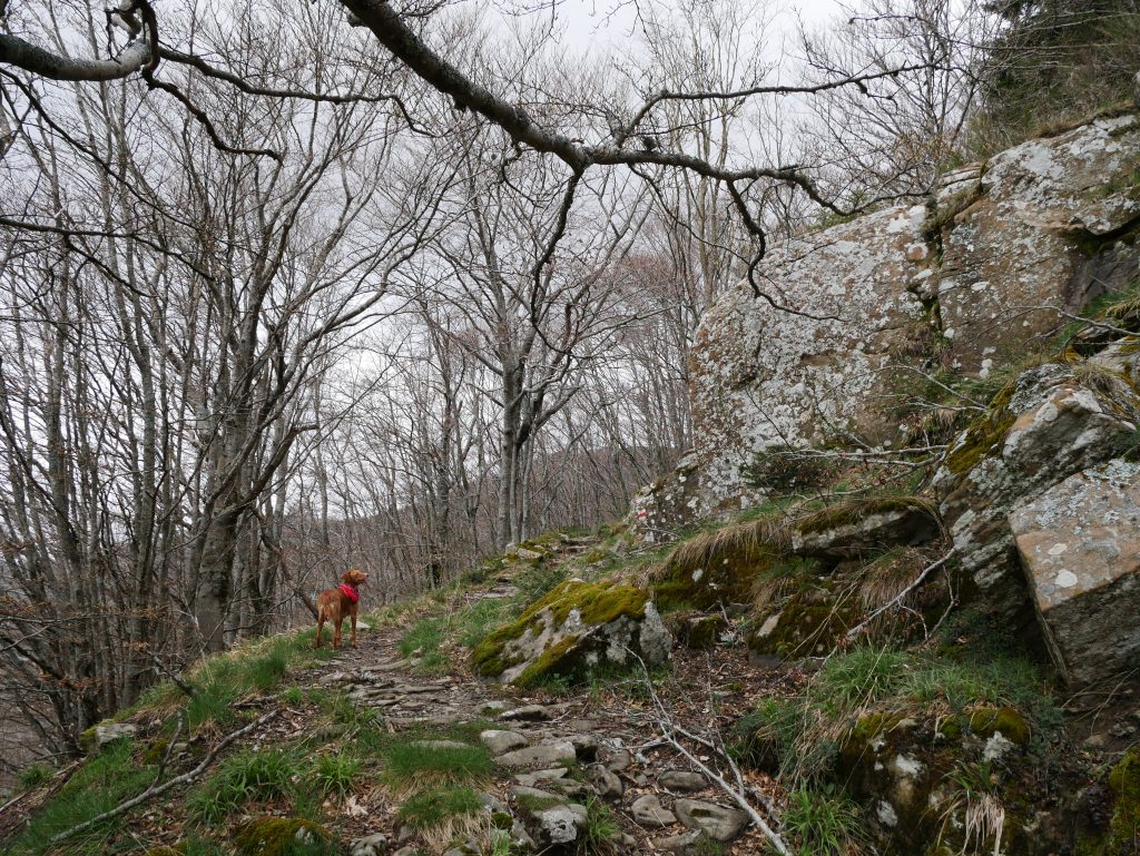 Mit dem Minicamper ins Pratomagno Gebirge by Birgit Strauch