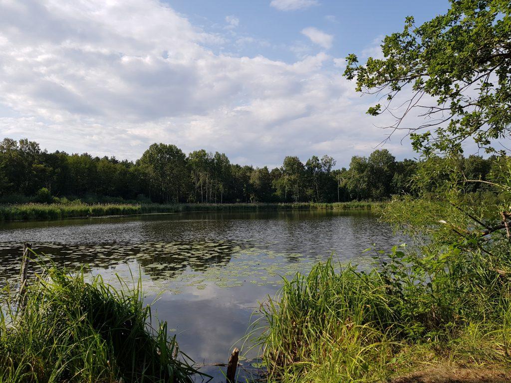 Der Kessel am Neuendorfer See by Birgit Strauch