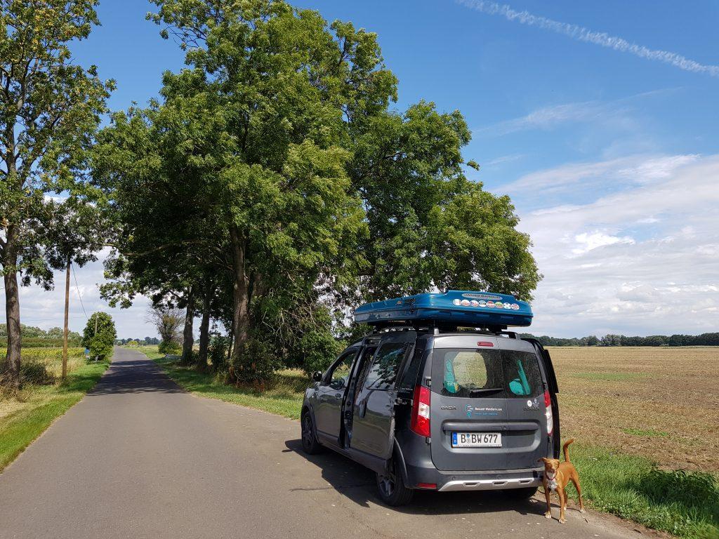 Straße nach Kienitz Oderbruch by Birgit Strauch