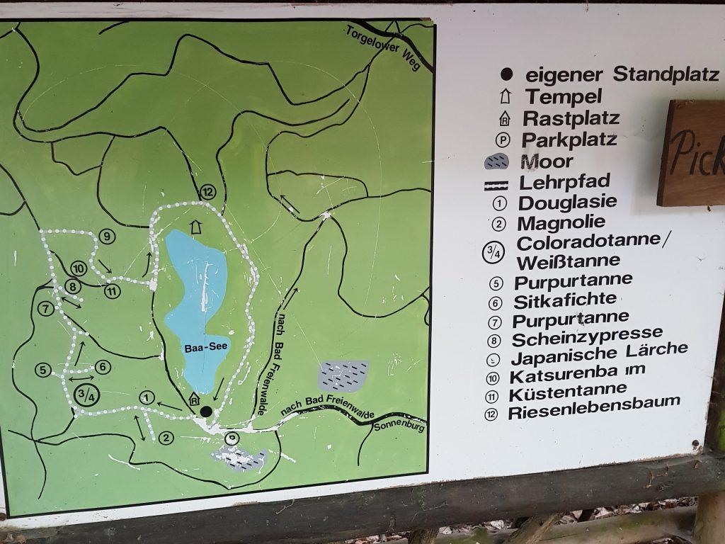 Minicamper Stellplatz Baasee by Birgit Strauch