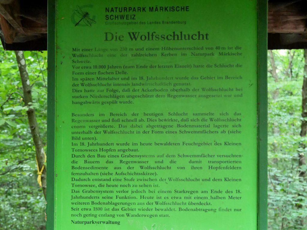 Märkische Schweiz Wolfsschlucht by Birgit Strauch
