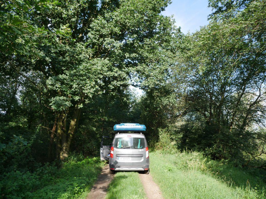 Feldweg bei Kienitz Oderbruch by Birgit Strauch