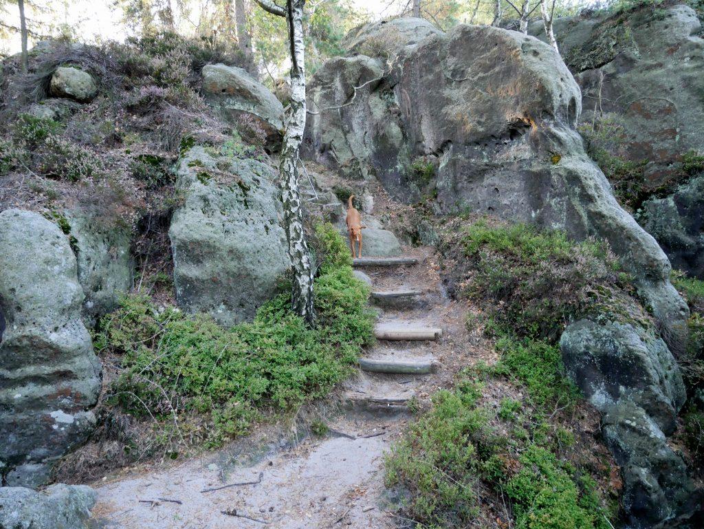 Wandern in der Jonsdorfer Felsenstadt by Birgit Strauch