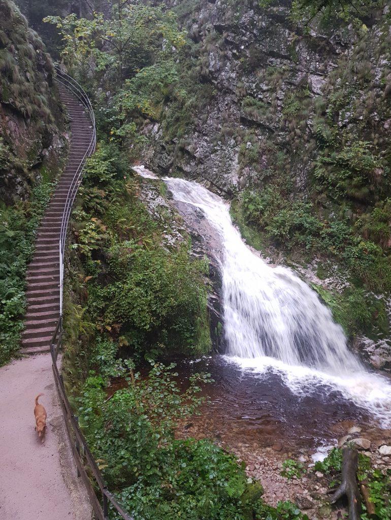 Allerheiligen Wasserfälle by Birgit Strauch