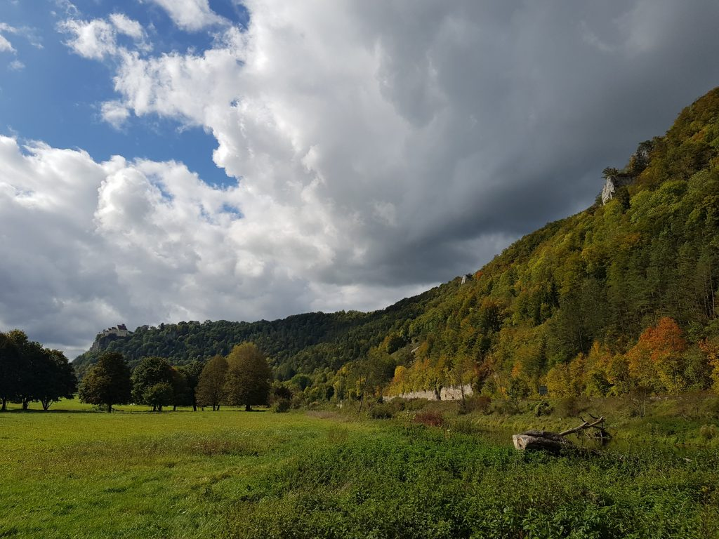 Donautal bei Hausen by Birgit Strauch