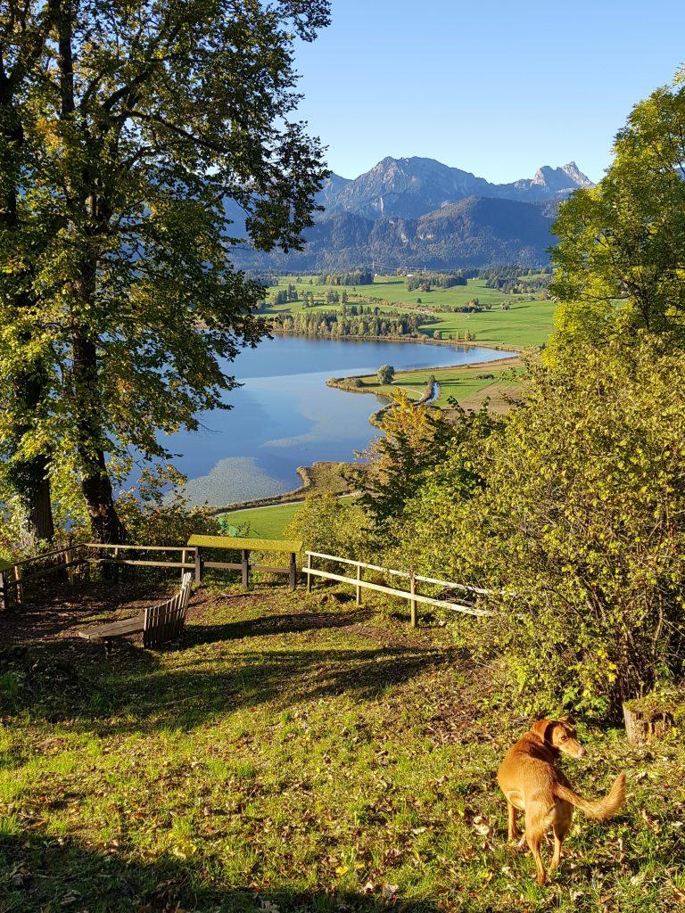 Hopfen am See by Birgit Strauch