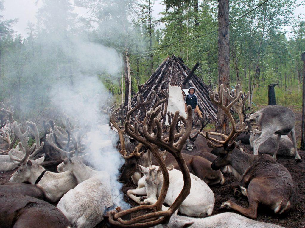 Sibirien by Birgit Strauch