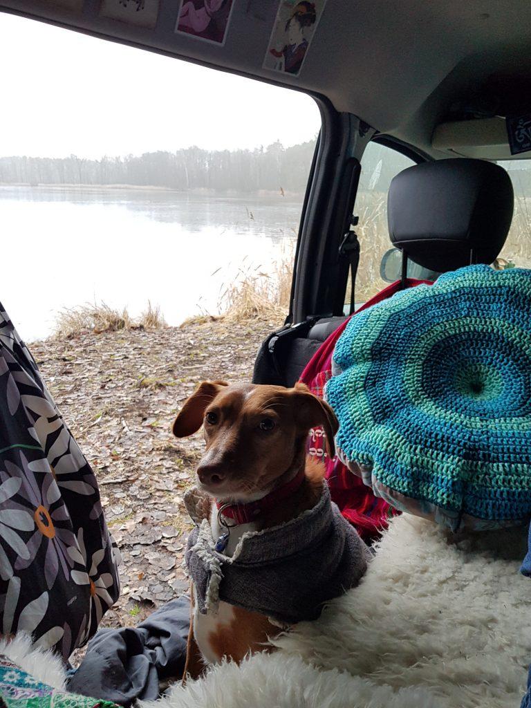 Wintercamping am Oderiner See by Birgit Strauch