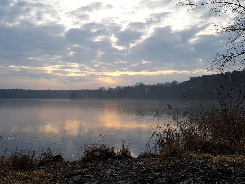 Oderiner See by Birgit Strauch