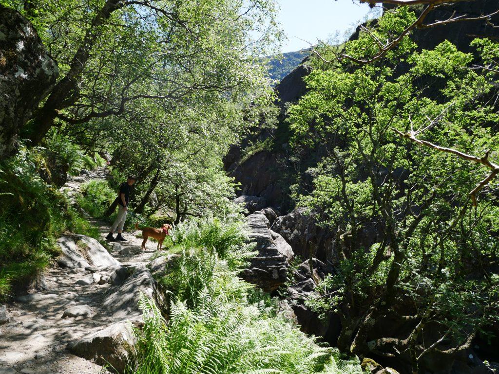 Mit Dachzelt zu den Steall Falls by Birgit Strauch