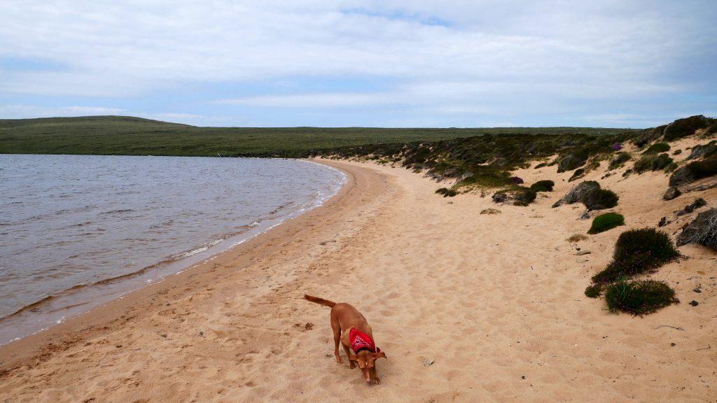 Wanderung Richtung Sandwood Bay by Birgit Strauch