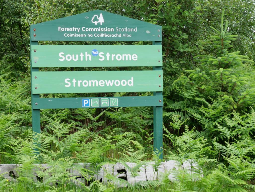 Strome Wood Parking by Birgit Strauch