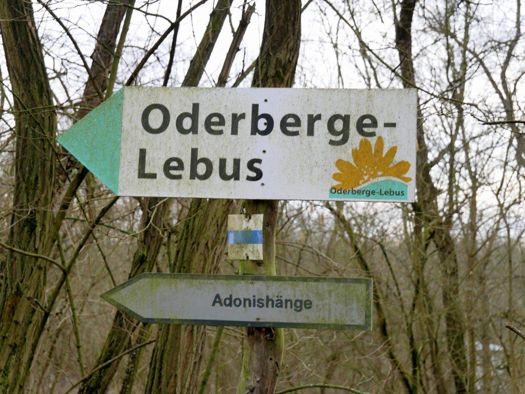 Oderberge by Birgit Strauch