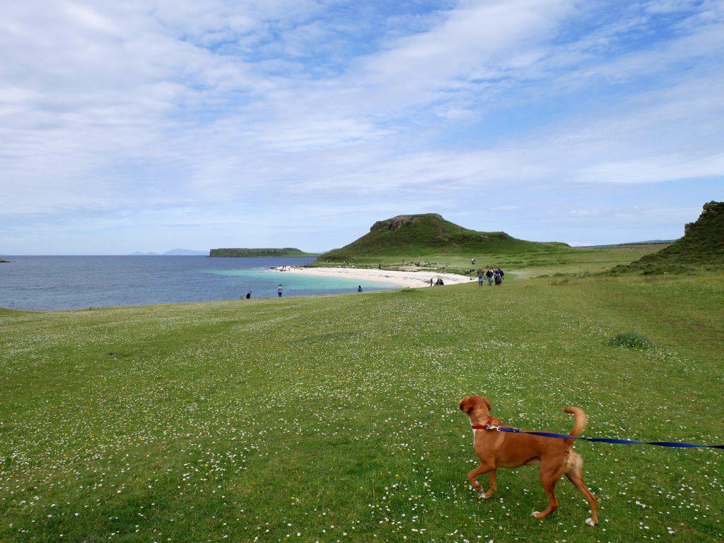 Coral Beach, Skye by Birgit Strauch