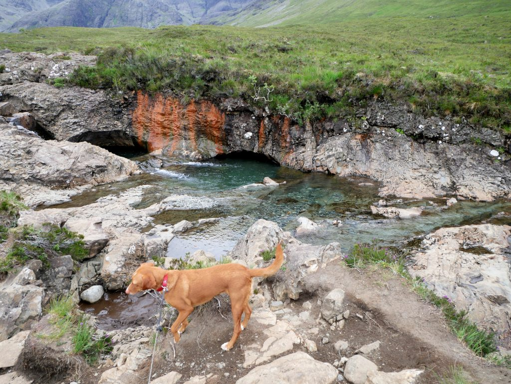Fairy Pools by Birgit Strauch
