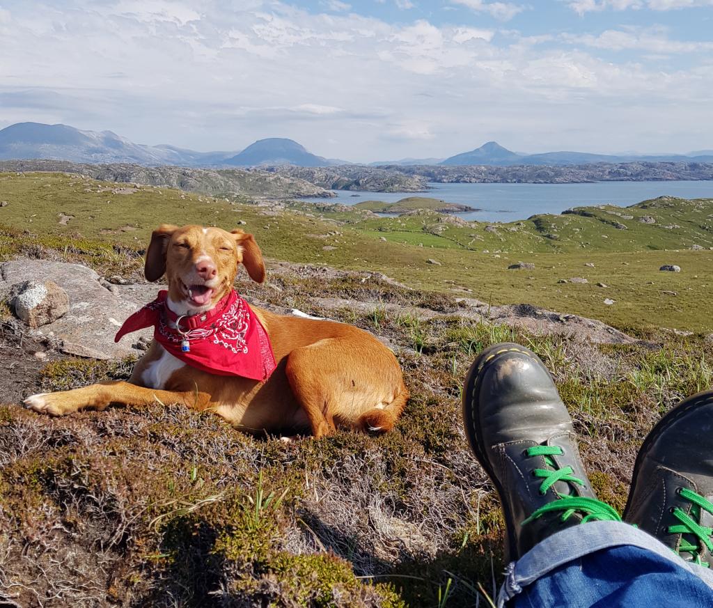 Mit Hund in Schottland